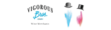 Vigorous-Brothers-360x100