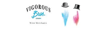 Vigorous-Brothers-360x100